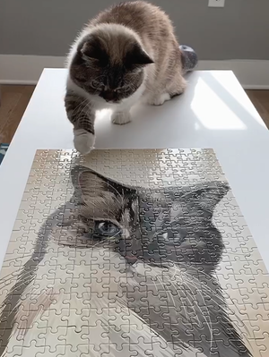 Custom One-Pet Puzzle