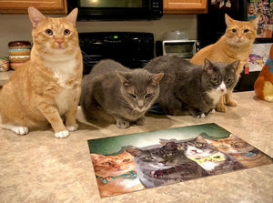 Custom Three-Pet Portrait Puzzle