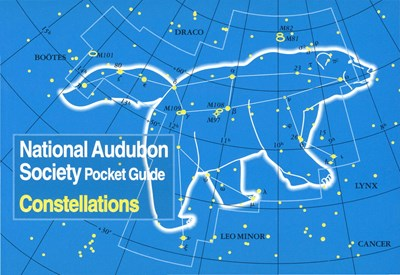 Audubon Pocket Guide Constellation