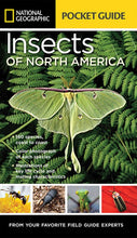 Load image into Gallery viewer, National Geographic Pocket Guide: Insect of N. America
