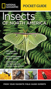 National Geographic Pocket Guide: Insect of N. America