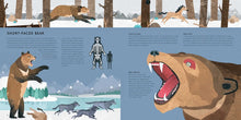 Load image into Gallery viewer, Mega Meltdown: The Weird And Wonderful Animals of the Ice Age
