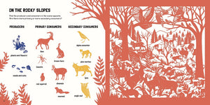 Animal Habitats: Search and Find Activity Book