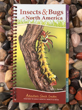 Load image into Gallery viewer, Insects & Bugs of North America Field Guide