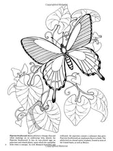 Load image into Gallery viewer, Butterflies Coloring Book