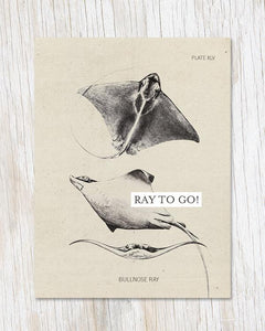 Ray To Go! Card