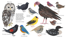 Load image into Gallery viewer, Counting Birds: The Idea That Helped Save Our Feathered Friends
