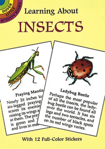 Learning About Insects