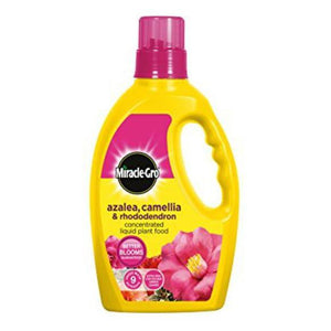 Miracle Gro Azalea Camellia & Rhododendron 1L Plant Food | 4104442 Fitzgeralds_Homevalue_Euronics_Hardware_Dingle_Kerry