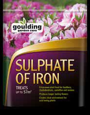 Gouldings Sulphate of Iron 2Kg | GLD210 Fitzgeralds_Homevalue_Euronics_Hardware_Dingle_Kerry