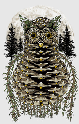 Pinecone Owl: Yeah Right