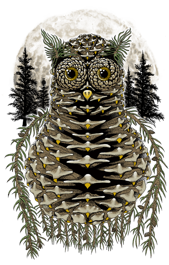 Pinecone Owl Design by Yeah Right