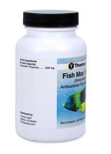 fish mox forte 500mg fish antibiotics by thomas labs