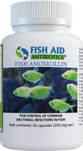 Load image into Gallery viewer, fish-aid-antibiotics-amoxicillin-250 mg-30cts