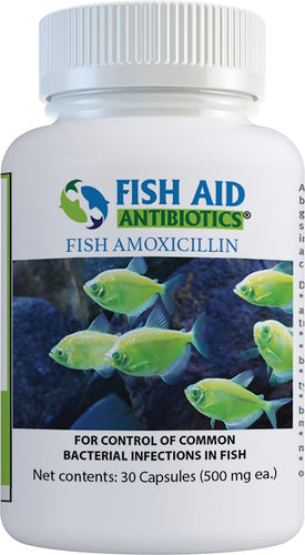 Fish Aid 500mg 30 count Antibiotics Amoxicillin Capsules Fish Medication By Fish Aid Antibiotics