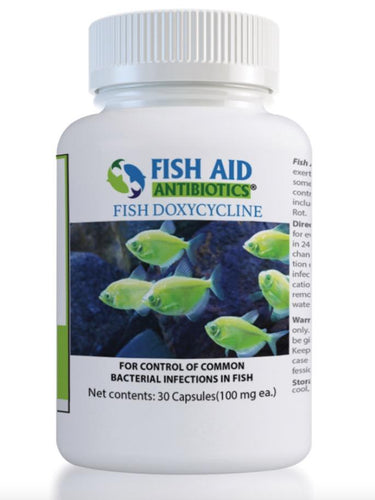 Fish Doxy Equivalent Fish Doxycycline 100 mg - 30count freeshipping - Fish Antibiotics - Fishick