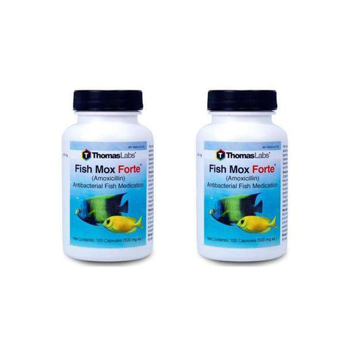 fish mox 500 mg fish antibiotics by thomas labs