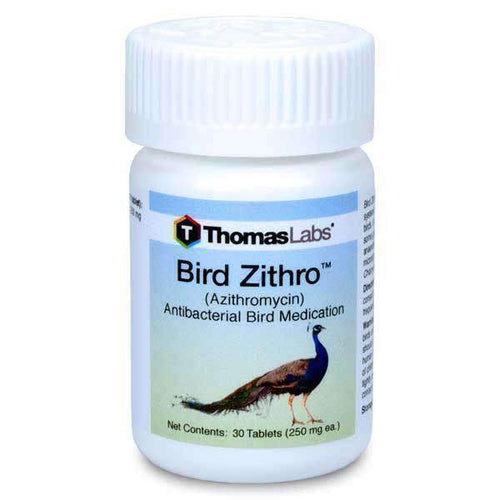 Bird zithro 250mg 30count
