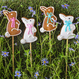 Harck & Heart Bunny Pop Gingerbread Biscuits food Harck & Heart