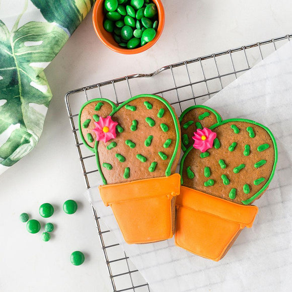 Harck & Heart Cactus Gingerbread Biscuits food Harck & Heart