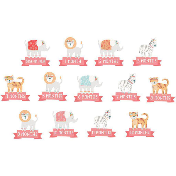 First Year Belly Stickers - Animals, Pink