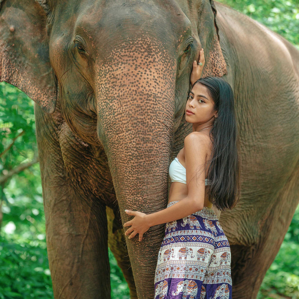 Angkor Elephant Pants - PURPLE Elepanta Women's Pants - Buy Today Elephant Pants Jewelry And Bohemian Clothes Handmade In Thailand Help To Save The Elephants FairTrade And Vegan