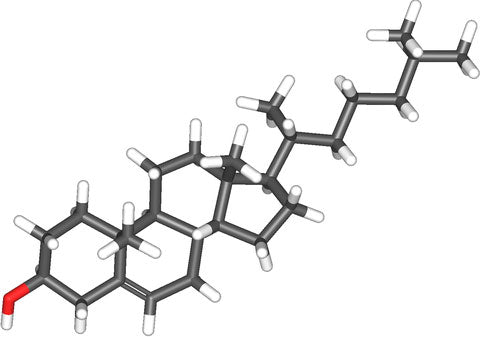 Butter in Coffee News: Cholesterol Chemical Structure.