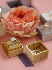 princess cut ring velvet mustard box