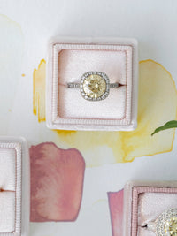 single ring engagement ring box neutral