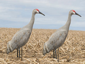SX Full Body Painted Sandhill Crane (2 Pack)