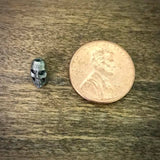 Indonesian Tiny Skull
