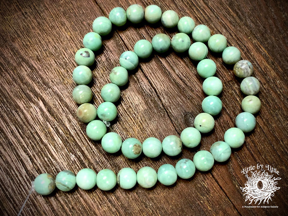Green Terra Agate 8mm Round Beads