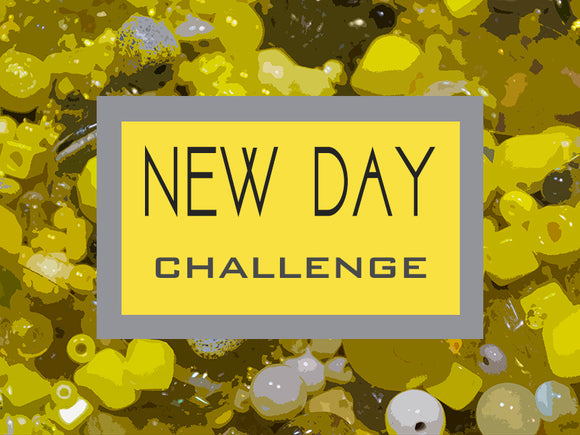 New Day Challenge Kit
