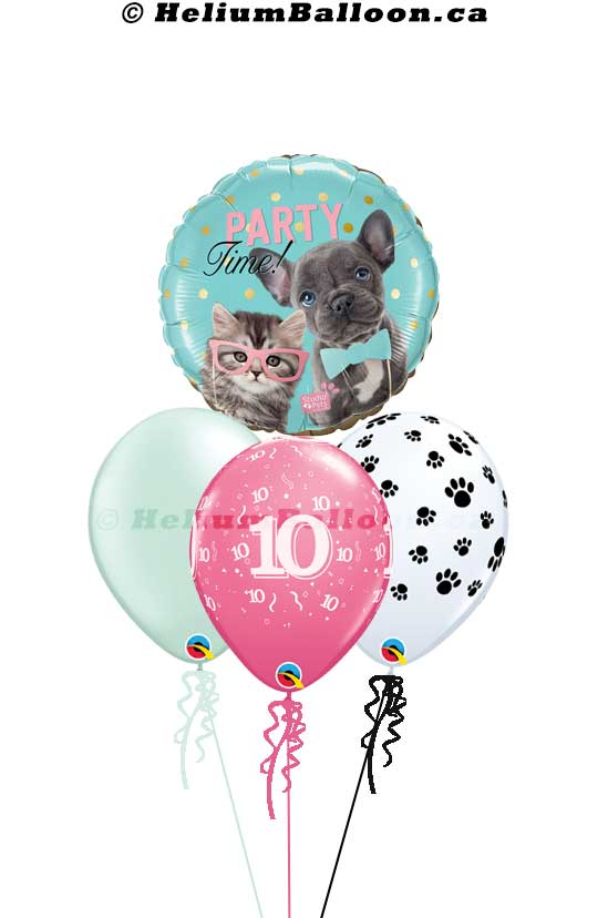 BQM3B0069_cute _Cat_dog_Happy birthday helium balloon bouquets Delivery Montreal By HeliumBalloon.ca