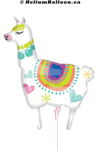 Llama helium balloon Montreal delivery Helium balloons bouquets montreal