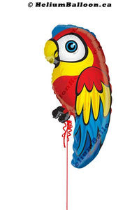 Parrot helium balloon Montreal delivery Helium balloons bouquets montreal