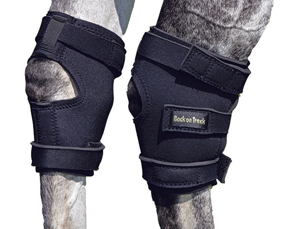 Back on Track Therapeutic Hock Wraps for Horses