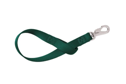 C4 Classic Green Belt with Green Buckle