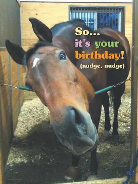 Horse Hollow Mug Birthday Card