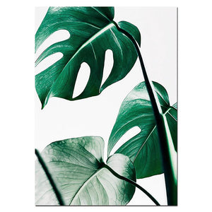 OMNIDEN 40x50cm / MONSTERA B GRØNN Canvas Prints