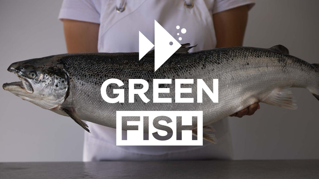 The first Organic Salmon in Africa