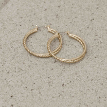 Load image into Gallery viewer, Indian Summer Gold Earrings