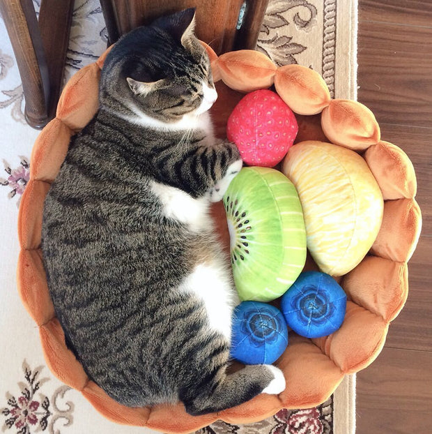 Ihrtrade Cat Fruit Tart Bed