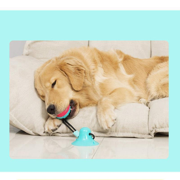 Ihrtrade Dog Toy With Suction Cup Chew Toy Ball (5 colors)
