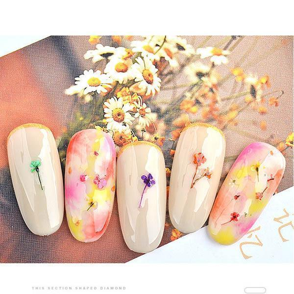 Ihrtrade Dried Flowers For Nails