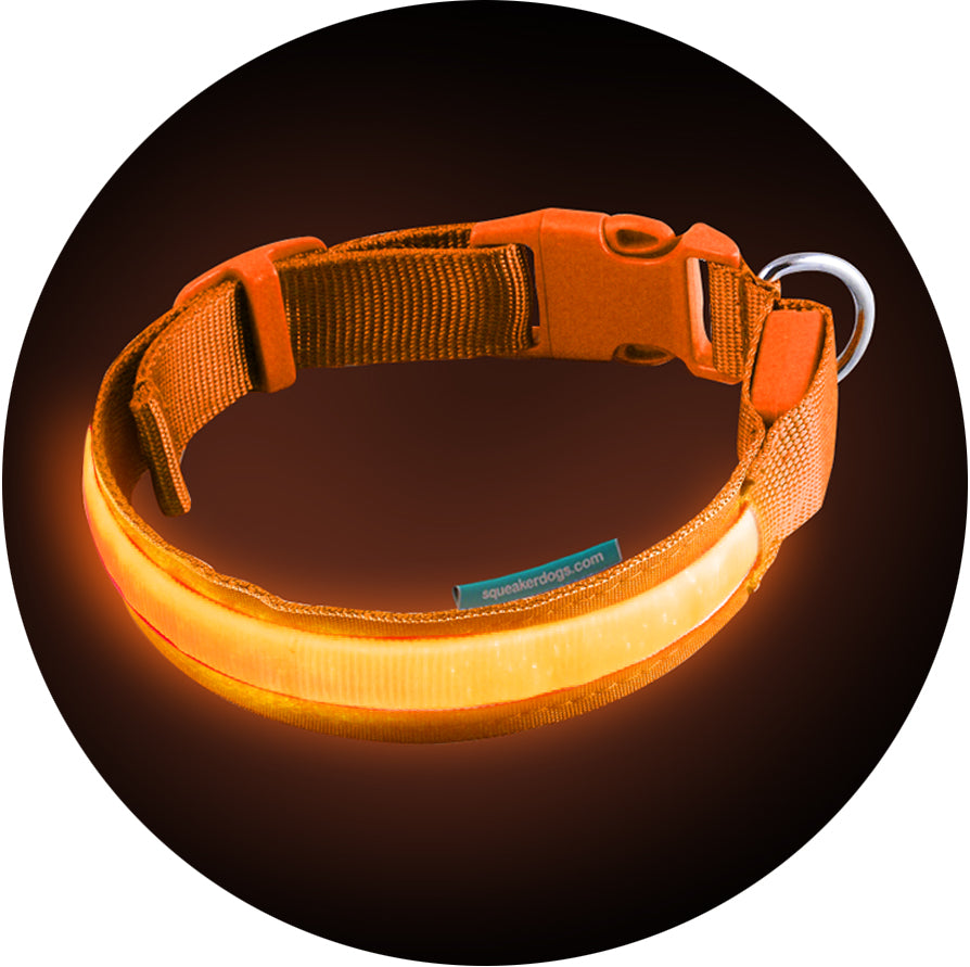 Basic Sunset Orange RGB Poochlight™ Light Up Flashing Dog Collar
