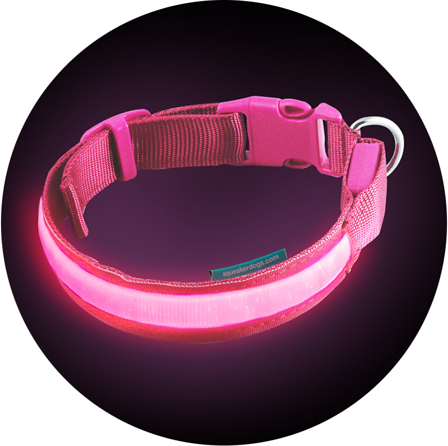 dog collar led up outdoors accessory waterproof leash lightupdogcollar aidipet light