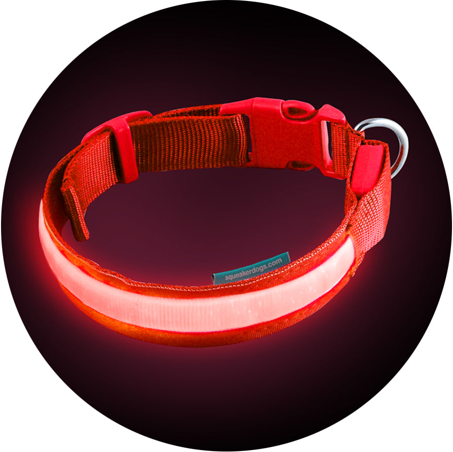 Basic Lava Red Poochlight™ Light Up Flashing Dog Collar
