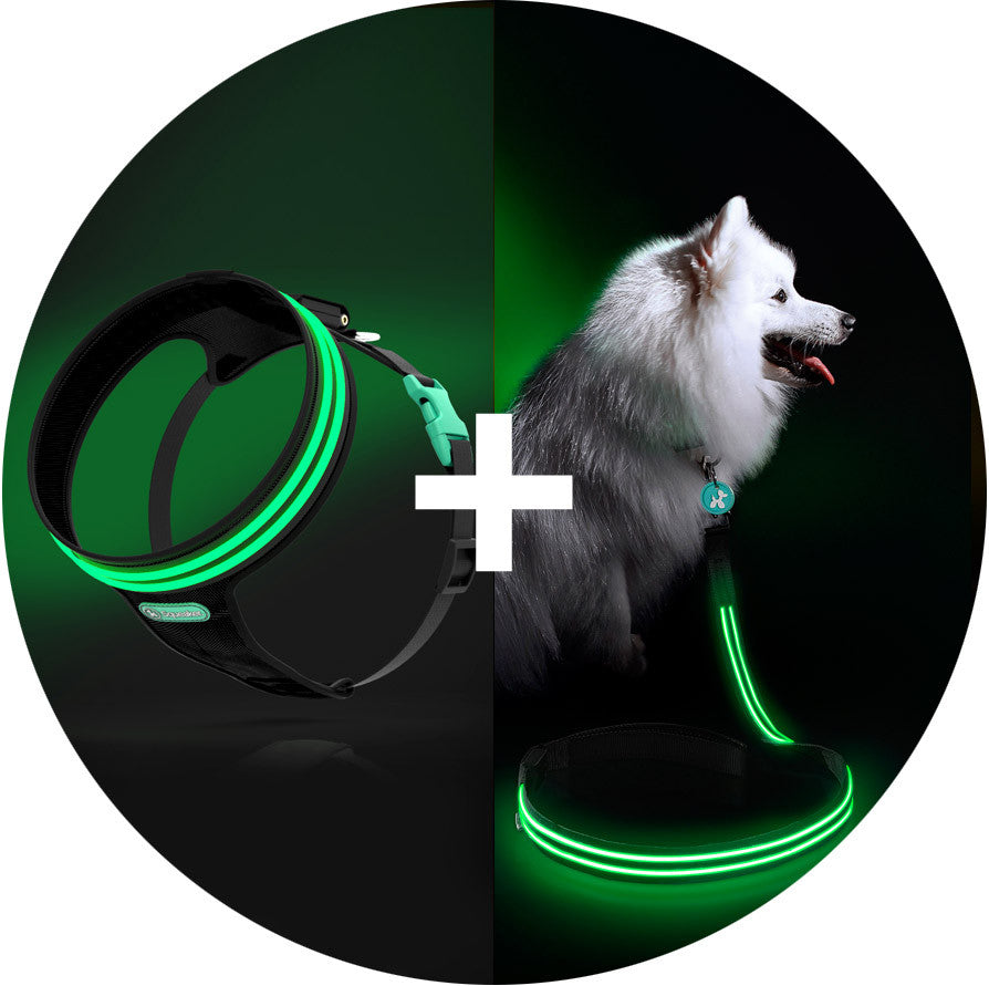 Monster Mash Poochlight™ Harness + Leash Value Combo