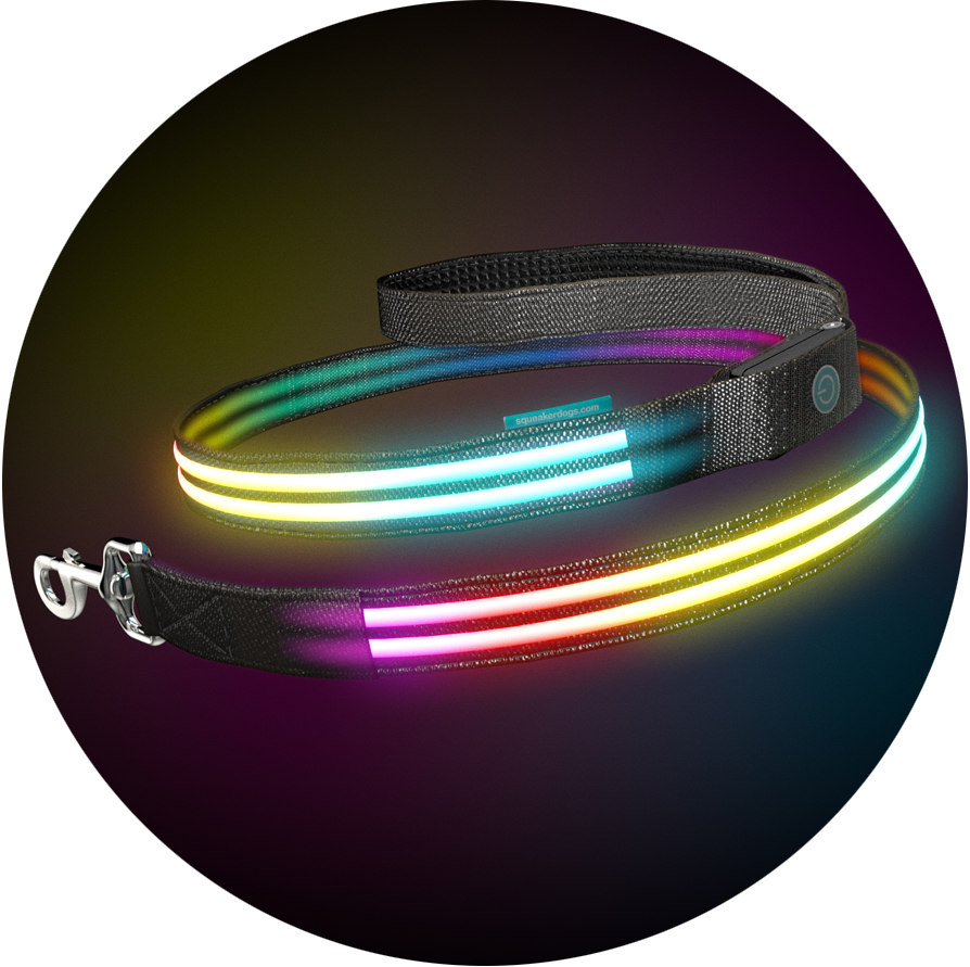 Double Rainbow Poochlight™ RGB Light Up Flashing Dog Leash
